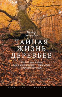 тайная жизниь деревьев. лес. ботаника. вольлебен. отзыв тайная жизнь деревьев.