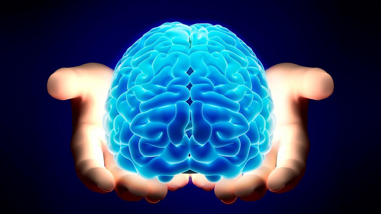 когнитивная схема. понятие когнитивной схемы. когнитивная карта.
